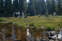 Pausing at the pond on Ptarmigan Lake Trail