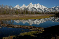 Springtime: Grand Tetons and Yellowstone